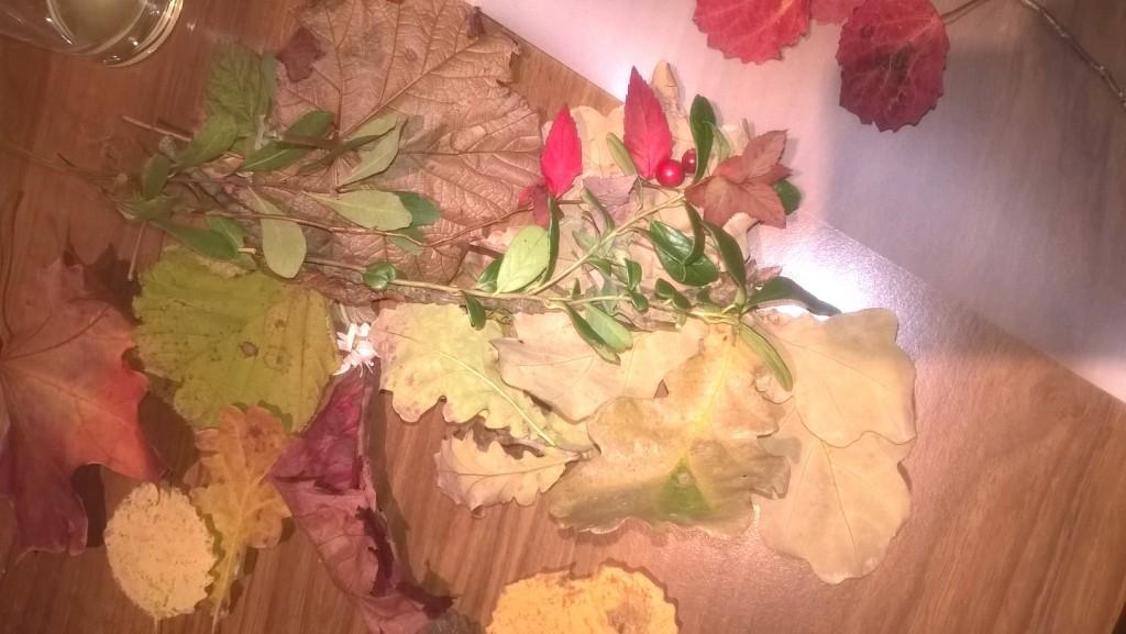 blader1