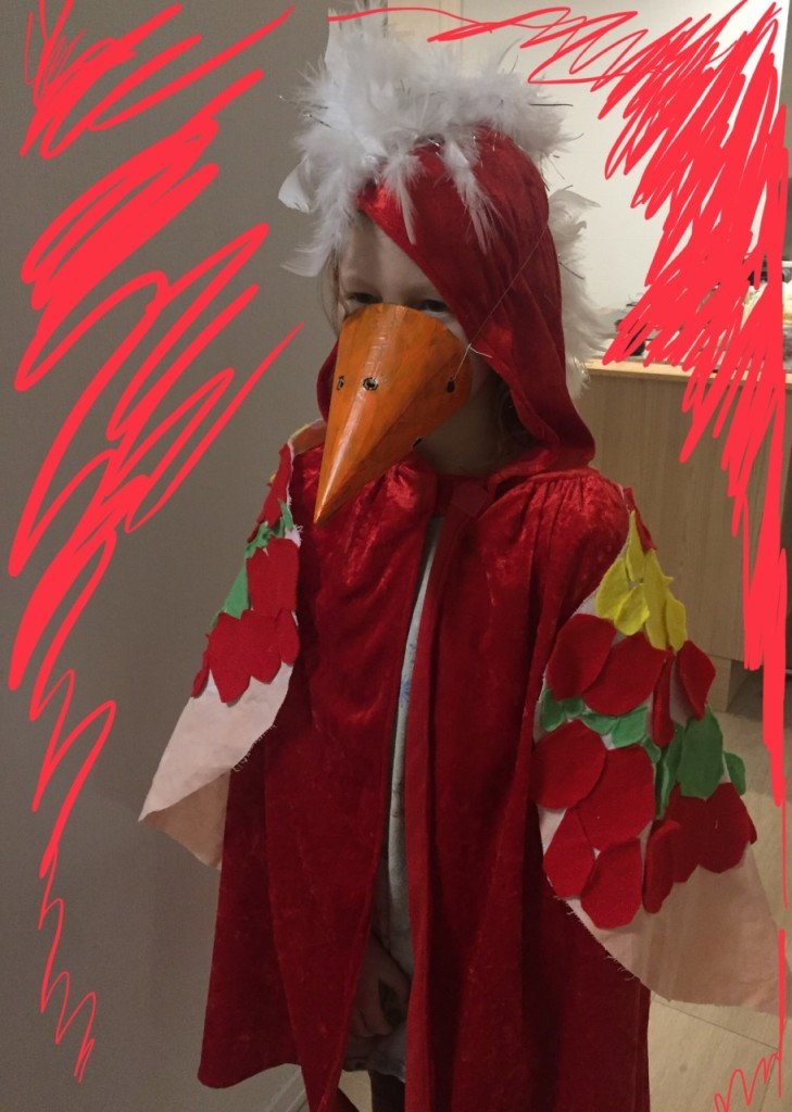 papegøye kostyme